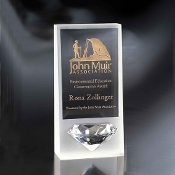 "The Crystal Ice Award is available in 10""Height"