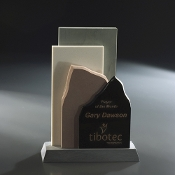 "Twin Peak and Cityscape Award, Size: 9""H"