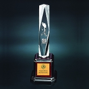 "The AC-A952 Acrylic Pillar Award is mounted on a rosewood base. Available in 3 sizes: 11""H, 12""H, 14""H"